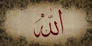 hadis_7-300x150